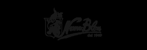 logo-nanobleu
